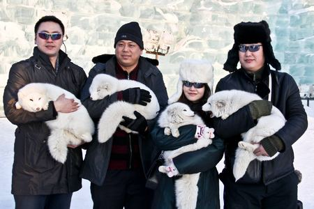 Tourist with lucky foxes. Harbin, China 2011